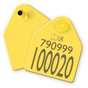 Replacement Cattle Tags