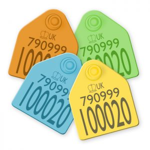 Management Cattle Tags
